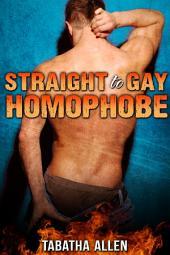 Straight to Gay Homophobe (Gay Straight mm Erotica): Straight Men Turned Gay Book
