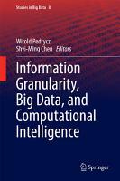 Information Granularity  Big Data  and Computational Intelligence PDF