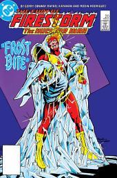 The Fury of Firestorm (1982-) #20