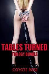 Tables Turned: BDSM Erotica