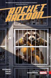 Rocket Raccoon: Grounded