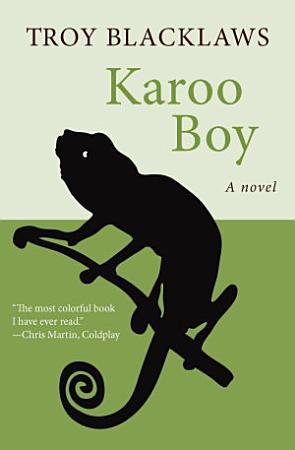 Karoo Boy PDF