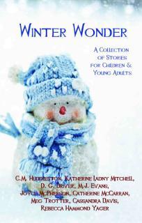 Winter Wonder Book