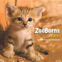 ZooBorns - Cats!
