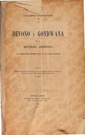 ... Deveno y Gondwana en la República Argentina: las formaciones sedimentarias de la parte noroeste...