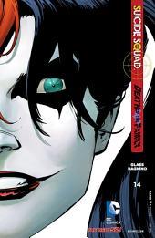 Suicide Squad (2011- ) #14