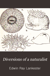 Diversions of a naturalist