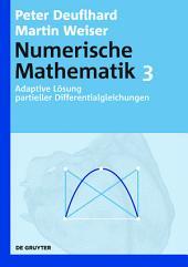 Adaptive Lösung partieller Differentialgleichungen