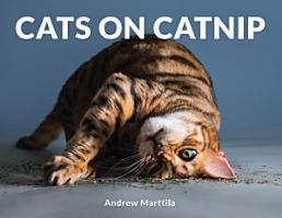 Cats on Catnip PDF