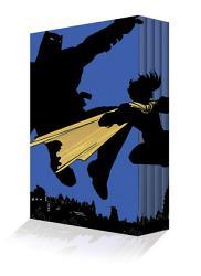 The Dark Knight Returns Slipcase Set PDF