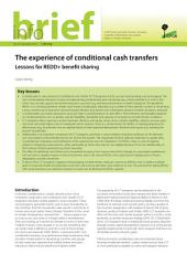 The experience of conditional cash transfers: Lessons for REDD+ benefit sharing