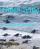 Green Turtle: an ancient memory