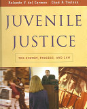 Juvenile Justice  The System  Process and Law PDF