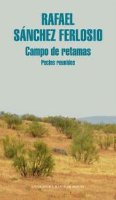 Campo de retamas: Pecios reunidos