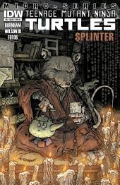 Teenage Mutant Ninja Turtles Microseries #5: Splinter