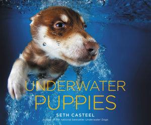 Underwater Puppies Book