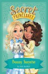 Secret Princesses: Bunny Surprise: Book 8
