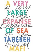 A Very Large Expanse of Sea PDF