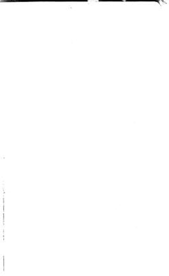 Annual Reports of the Executive Departments of the City of Pittsburgh for the Year Ending