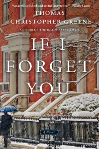 If I Forget You Book
