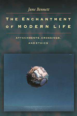 The Enchantment of Modern Life PDF