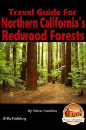 Travel Guide for Northern California's Redwood Forests