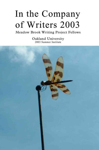 Download In the Company of Writers 2003 Book