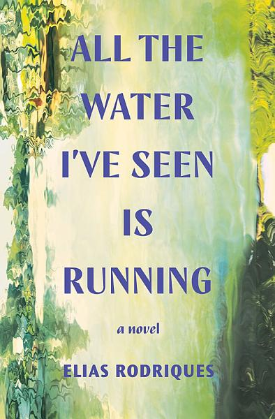 Download All the Water I ve Seen Is Running  A Novel Book