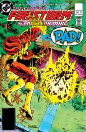 The Fury of Firestorm (1982-) #16