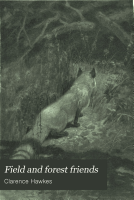 Field and Forest Friends PDF