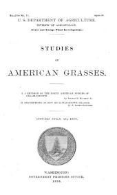 Studies on American grasses