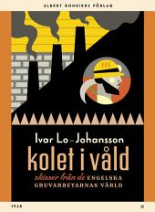 Kolet i våld: Skisser från de engelska gruvarbetarnas värld