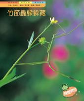 竹節蟲躲躲藏: 親親自然136