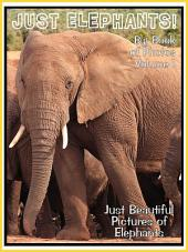 Just Elephants! vol. 1: Big Book of Photographs & Elephant Pictures