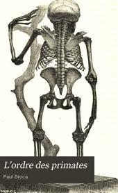 L'ordre des primates: Parallèle anatomique de l'homme et des singes