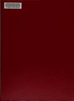 An  lisis PDF