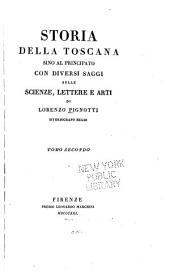 Storia della Toscana sino al principato con diversi saggi sulle scienze, lettere e arti: Volume 2