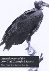 Annual Report of the New York Zoological Society: Volume 16