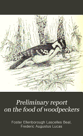 Preliminary Report on the Food of Woodpeckers