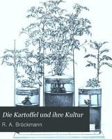 Die Kartoffel und ihre Kultur PDF