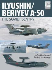 Flight Craft 6: Ily'yushin/Beriyev A-50: The 'Soviet Sentry'