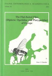 The Flat Footed Flies PDF