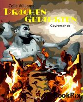 Drachengefährten: Gay Romance / Fantasy