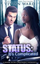 Status: It's Complicated (BWWM Secret Baby Romance)