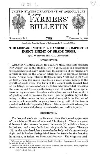The Leopard Moth PDF