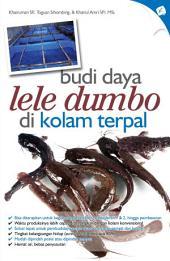 Budi Daya Lele Dumbo di Kolam Terpal