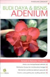 Budi Daya & Bisnis Adenium