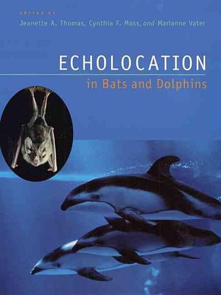 Echolocation in Bats and Dolphins