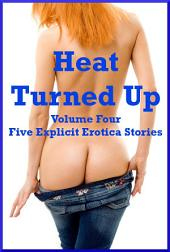 Heat Turned Up Volume Four: Five Explicit Erotica Stories