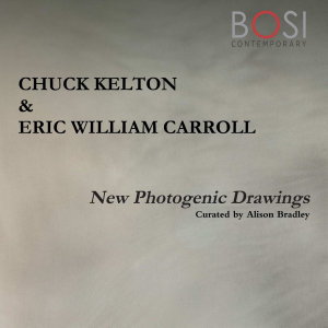 New Photogenic Drawings Book